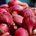 Cara Budidaya Bawang Merah Brebes Yang Baik & Benar