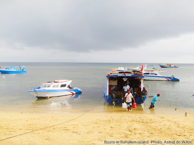 sightseeing, swimming and snorkeling in Manado Tua