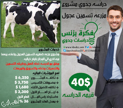 دراسه جدوي مشروع تسمين عجول
