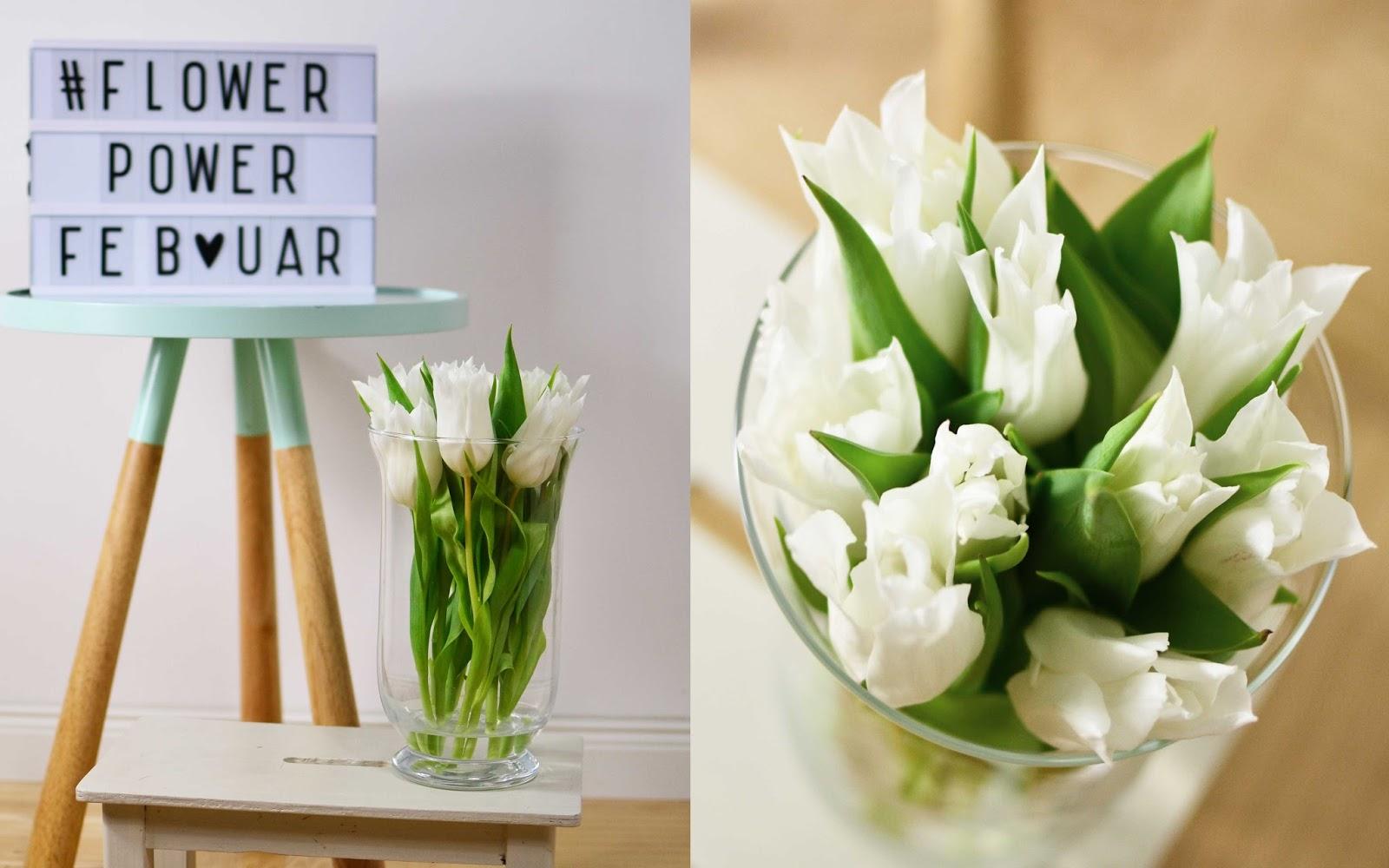 villa josefina flower power. Black Bedroom Furniture Sets. Home Design Ideas