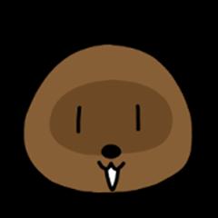 Raccoon pictograph