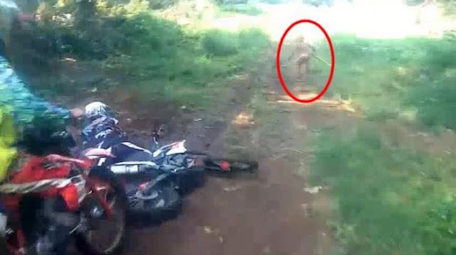 Viral! Makhluk Kecil Mirip Goblin Terekam Kamera Lari dari Tengah Hutan