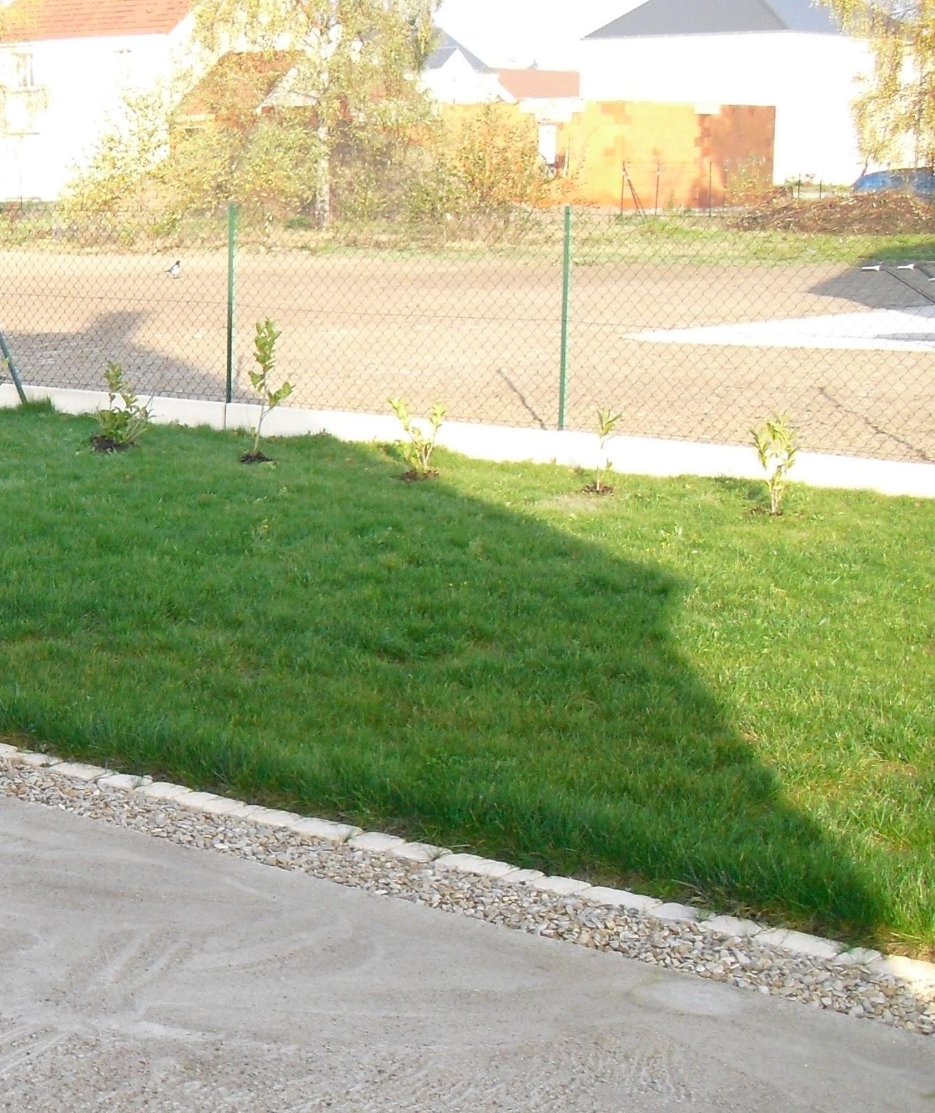 Mon petit jardin en Sologne: Le jardin a 5 ans ! Partie 1 : le ...