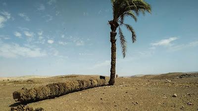 Αναζητώντας την αρχαία πόλη του Αντίνοου σε ένα ταξίδι εκτός της τουριστικής Αιγύπτου