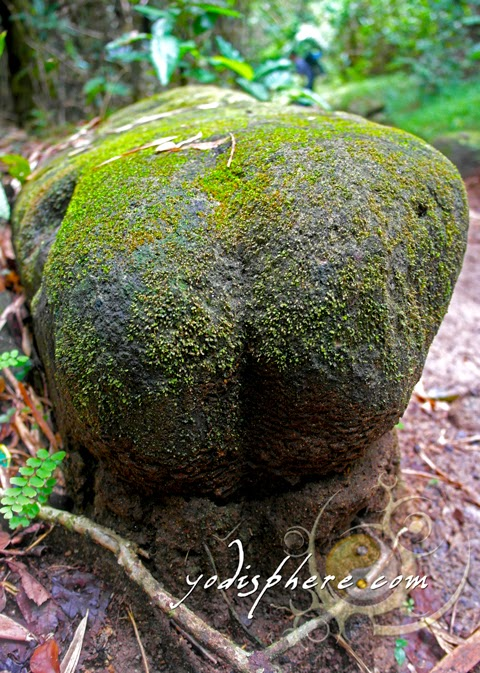 hover_share Boulder that looks like a human butt ass along the trail of Mt. Pico de Loro