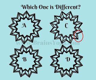 Answer of Odd Picture Out Visual Puzzle