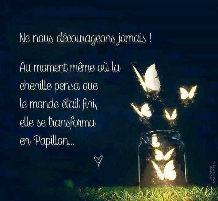Citations Option Bonheur Pour Remonter Le Moral