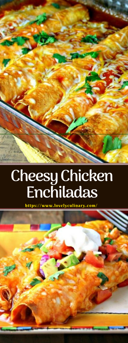 Cheesy Chicken Enchiladas #dinner #recipeeasy