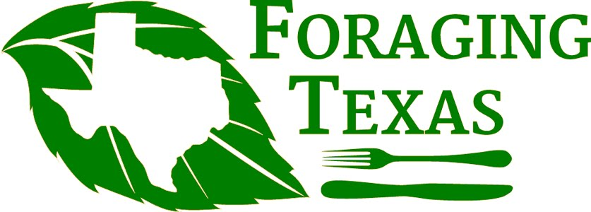 Foraging Texas