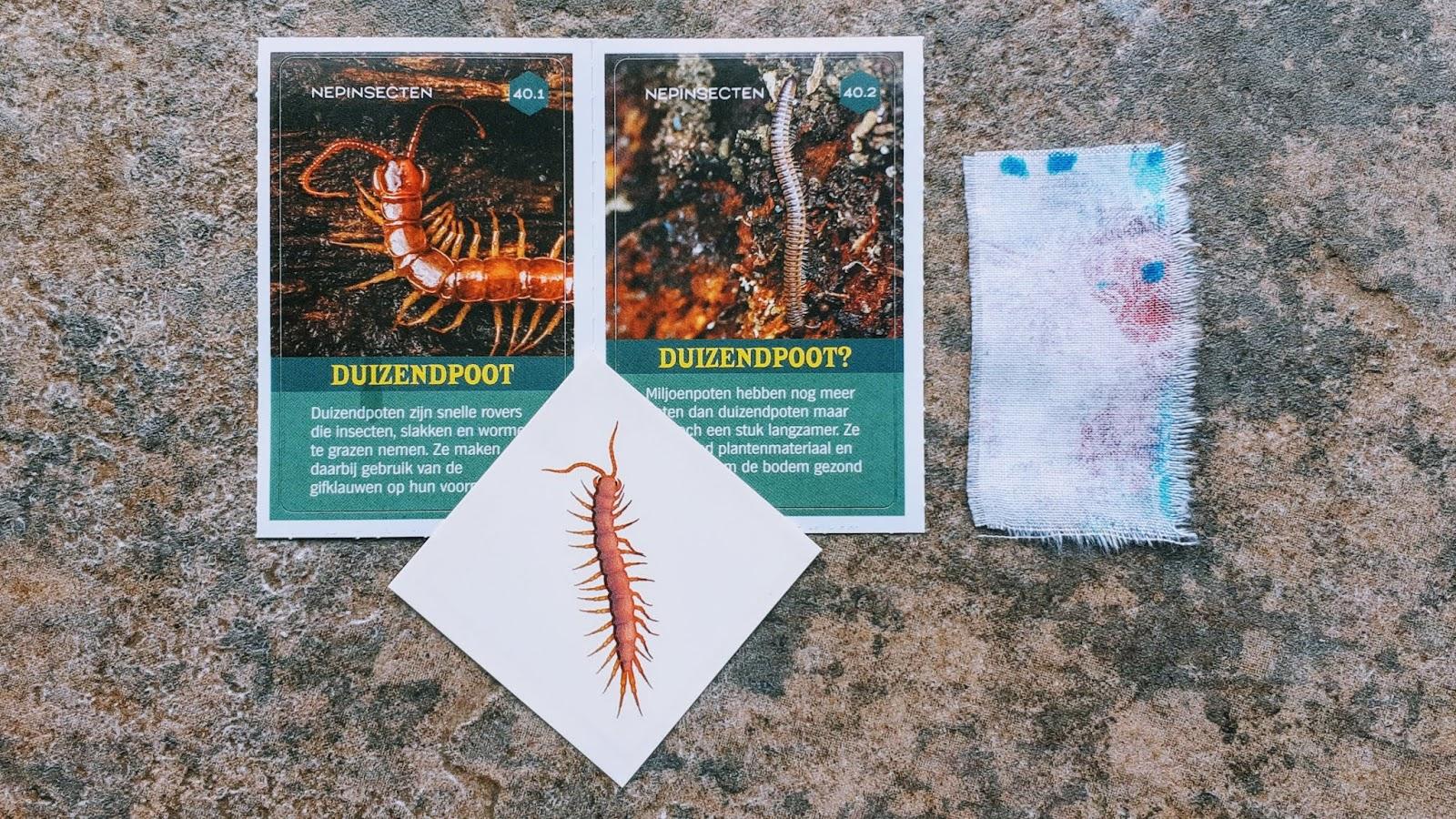 Chriss Cross Textile Art Insecten Tattoos Van Albert Heijn