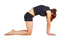 Postura del gato para reducir quistes ovario. Reducir quistes ovario. Tratamiento para reducir los quistes de ovario
