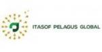 lowongan kerja sebagai it project manager pt.itasof pelagus global, infolokerbandung.com