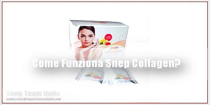 Snep Collagen