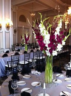 gladiola-bunga-lamongan