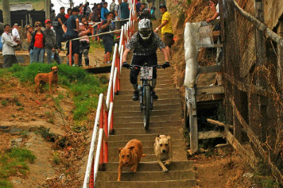 Competidor de Mountain Bike descendiendo por escaleras porteñas