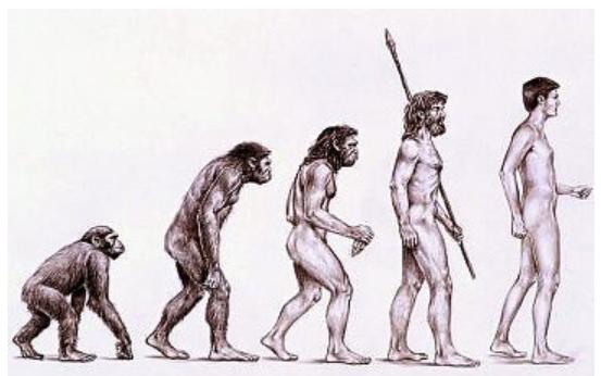 L'Homme, une aventure de quatre milliards d'années