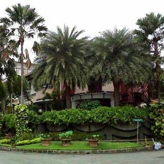 Tukang taman surabaya - taman tropis 1
