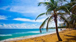 Naomi Loomis Caribbean Islands