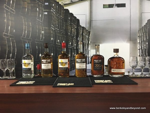 tasting set-up at Mount Gay Rum Visitor Experience on Barbados