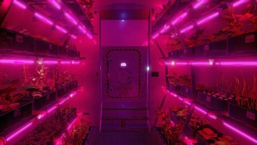 Bên trong khu môi trường sống nhân tạo, có một không gian riêng dành cho trồng trọt trong phòng kín, nơi đây cung cấp nguồn thực phẩm cho các phi hành gia.