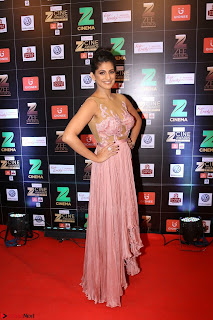 Bollywood Celebrities on the Red Carpet Of Zee Cine Awards 2017 Exclusive 121.JPG