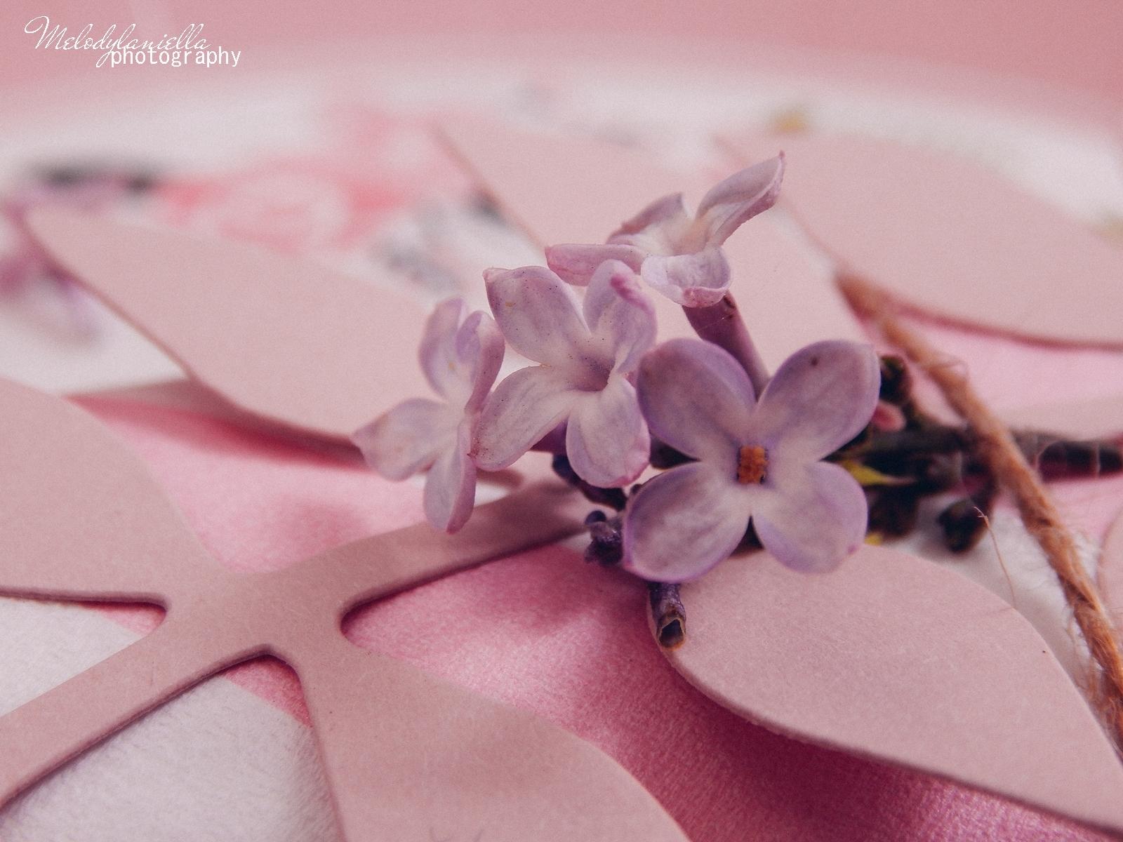 15 partybox.pl imprezu urodziny stroje dodatki na imprezę dekoracje nakrycia akcesoria imprezowe jak udekorować stół na dzień mamy pomysły na dzień matki pomysły na niespodzianki urodzinowe