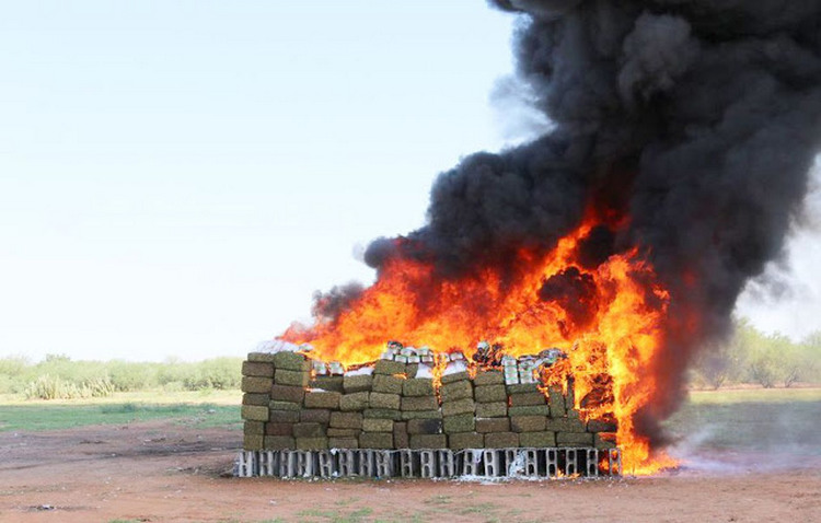 PGR destruye cerca de 5 toneladas de droga en Sonora