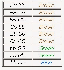 Mrs  Kannady's Classes: Eye Color Chart for Genotype Chart