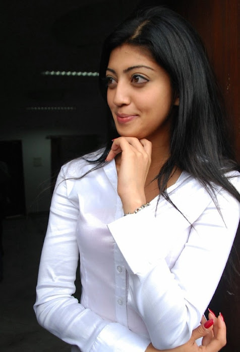 praneetha the girl in white shirtjeans hot photoshoot