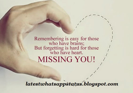 Whatsapp DP of Miss u status and quotes - whatsapp miss you Profile ...