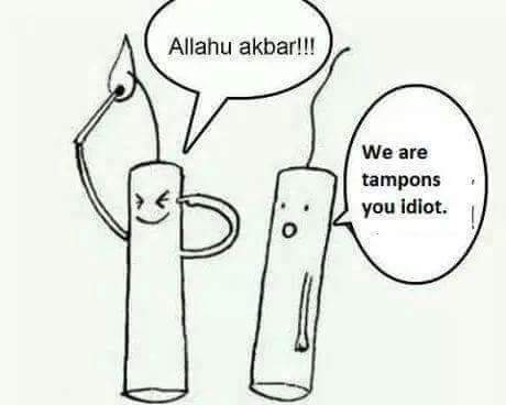 Funny We Are Tampons, You Idiot! Cartoon Picture