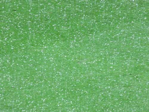 Hail in Lyon, Euro 2016.