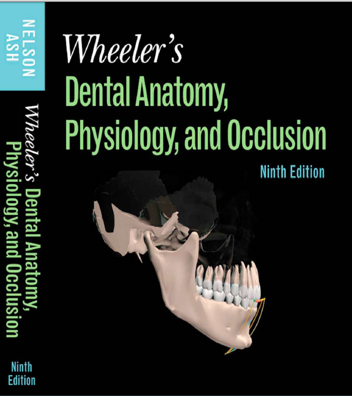 All Medical ebook pdf: Dental Anatomy Physiology and Occlusion 9th ...
