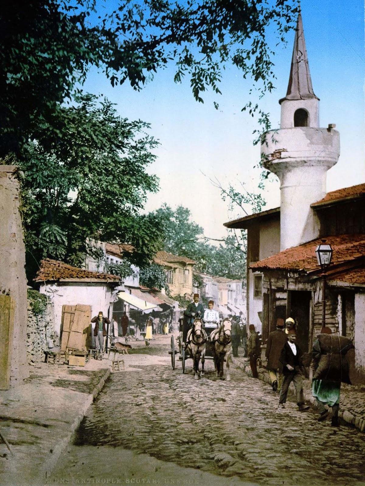 The Scutari district.