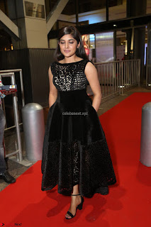 Niveda Thomas Black Sleeveless Cute Dress at 64th Jio Filmfare Awards South 2017 ~  Exclusive 129.JPG