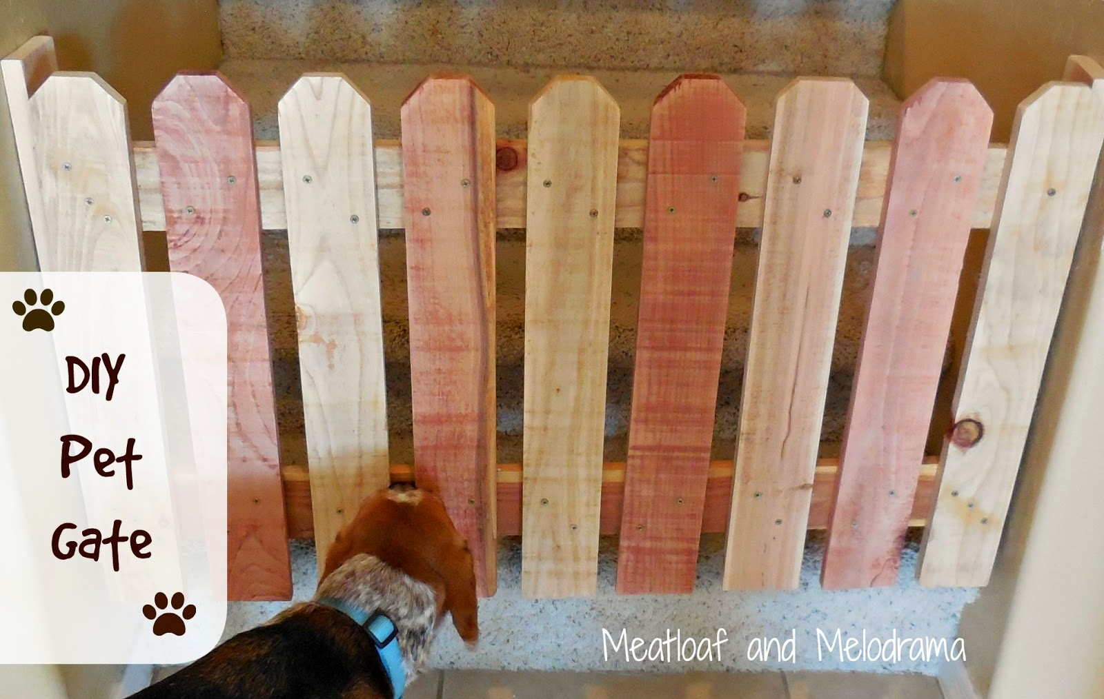 Meatloaf And Melodrama Diy Pet Gate