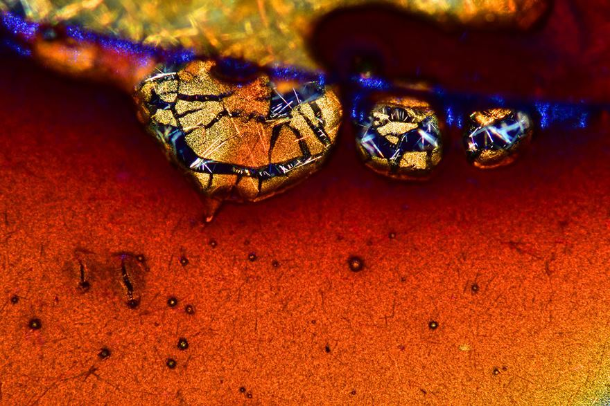 2016 Nikon Macro Photo Contest Winners Show The World Like You've Never Seen Before - Ninth Place. Espresso Coffee Crystals