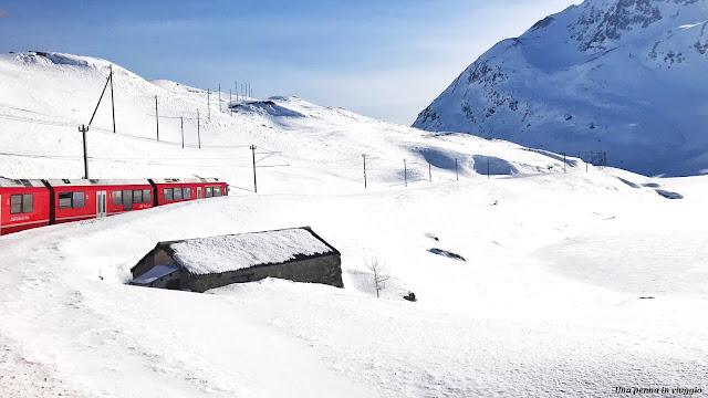 informazioni Bernina treno