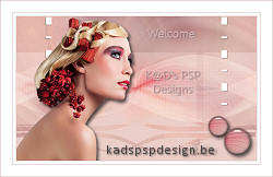 http://kadspspdesign.be/NL_Les_449_Mealyn.html