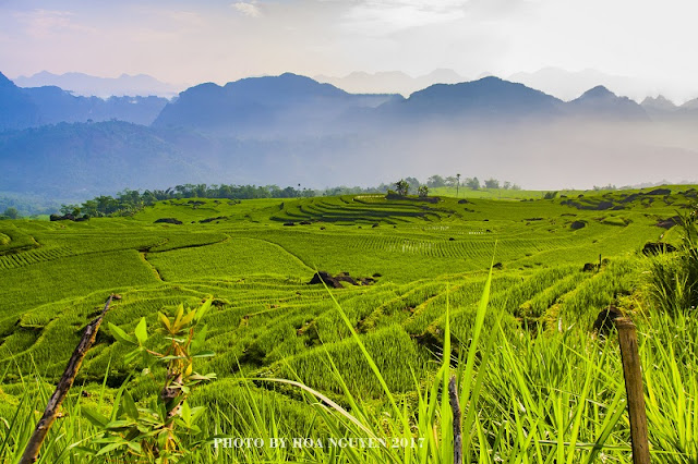 Where to go in Vietnam for a private tour package is perfect? 2