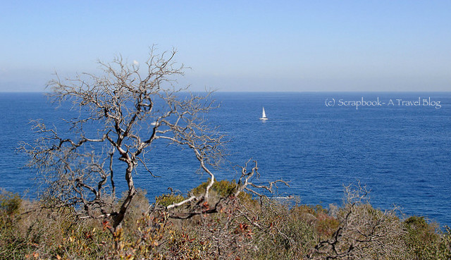 Santa Catalina Island and blue ocean
