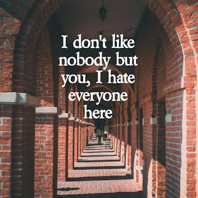 I don't like nobody but you, I hate everyone here