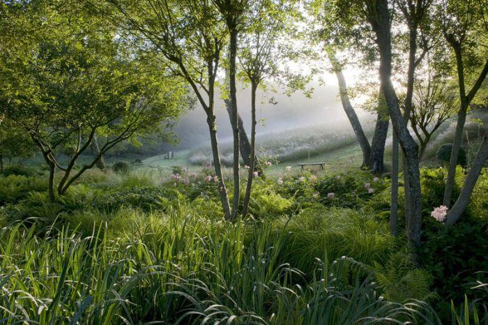 Los jardines de bruno suet guia de jardin - Los jardines de lola ...