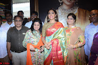Shriya Saran Looks Stunning in Silk Saree at VRK Silk Showroom Launch Secundrabad ~  Exclusive 076.JPG