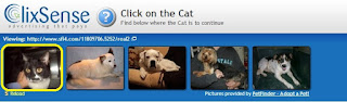 Valide o anuncio clicando no gato