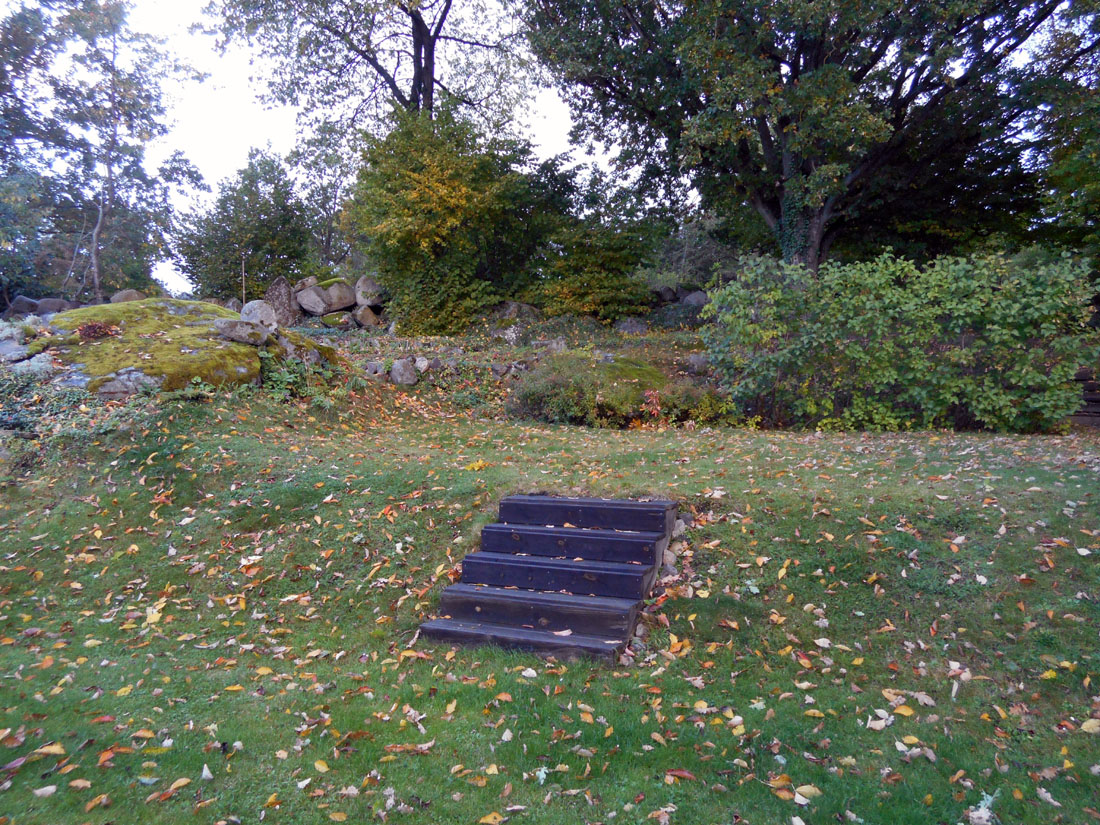 Il mio giardino all'inizio dell'autunno