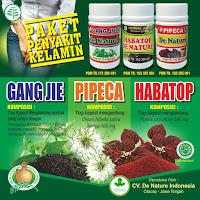 Obat Penyakit Kencing Keluar Nanah Herbal untuk Pria dan Wanita