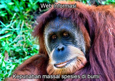 Kepunahan spesies mamalia