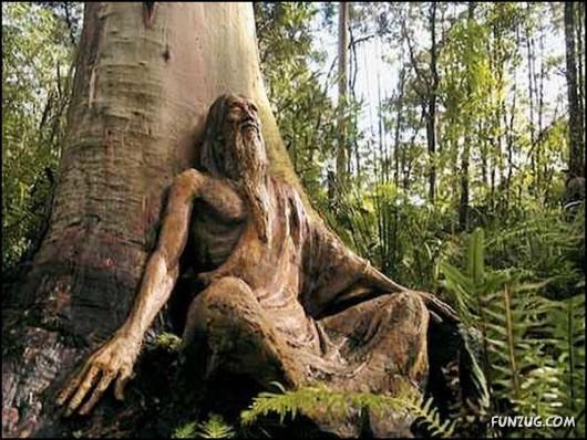 Wooden sculpture garden in Australia | Animal Photo