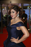 Payal Ghosh aka Harika in Dark Blue Deep Neck Sleeveless Gown at 64th Jio Filmfare Awards South 2017 ~  Exclusive 147.JPG